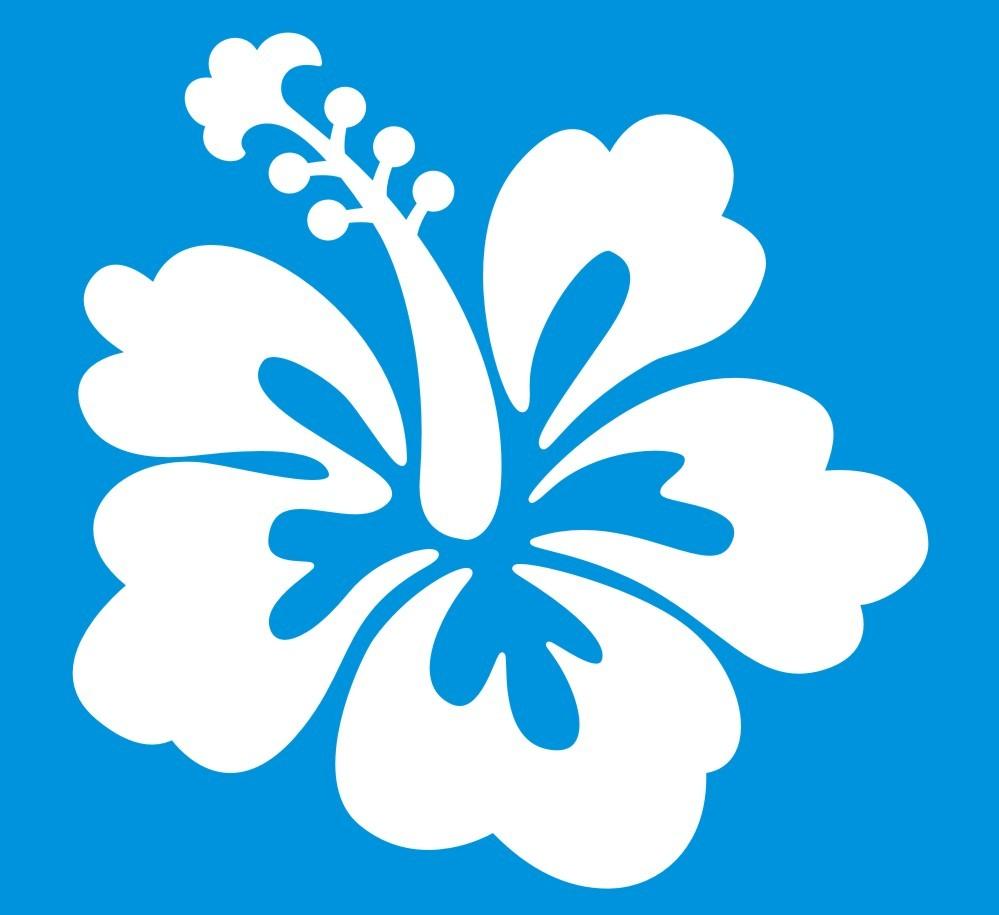 30 hibsicus flower stickers izmirmasajfo